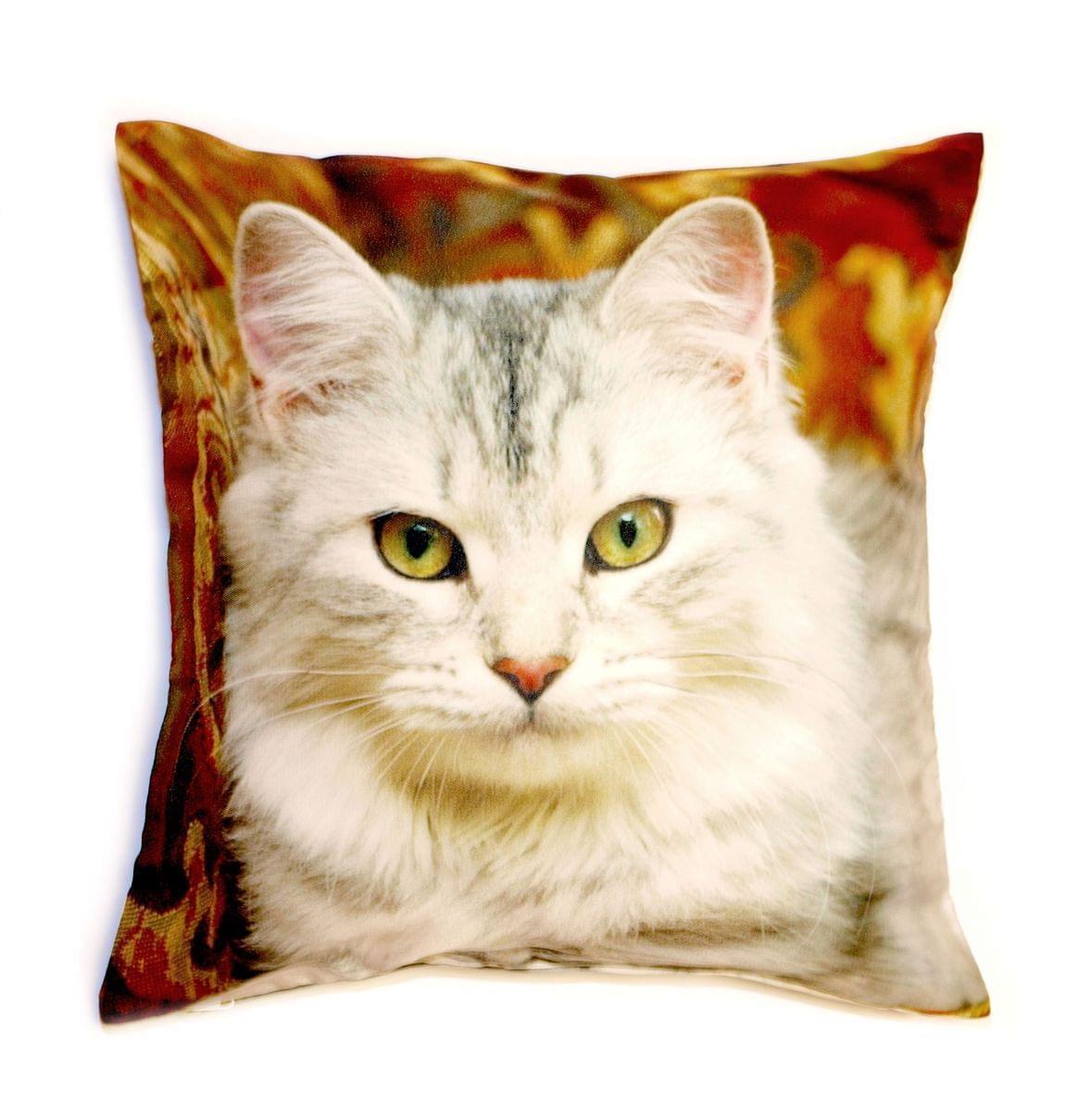 Forbyt, Fotopolštář, Kočka, 40 x 40 cm polštář (návlek + vnitřek)