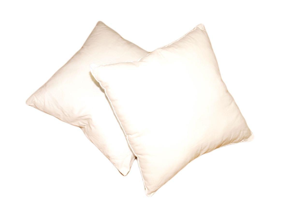 Forbyt, Výplň do polštáře, bílý, 60 x 60 cm, čtverec