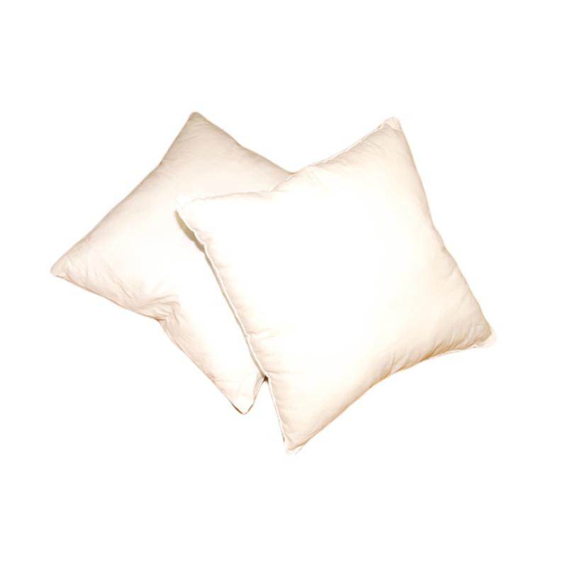 Forbyt, Výplň do polštáře, bílý, 40 x 40 cm, čtvercový